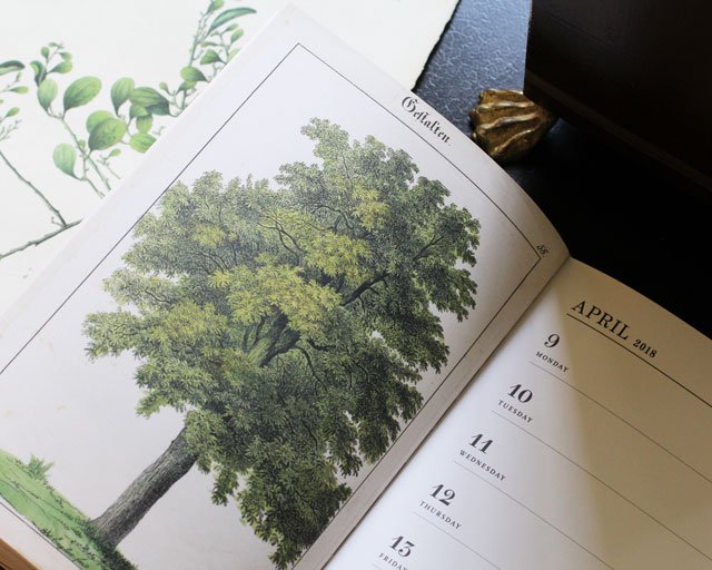 The Scouted Calendar: April 2018