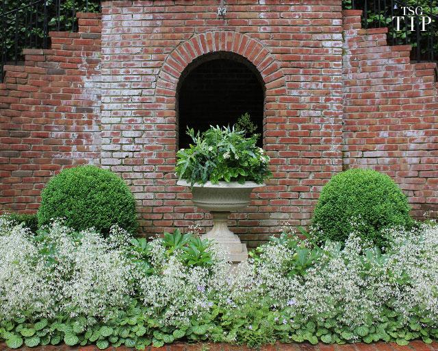 texture in garden tip