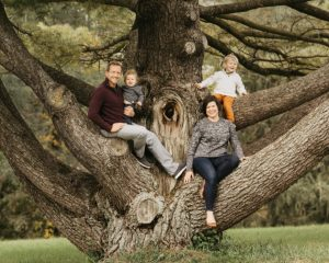 Arbor Aesthetics